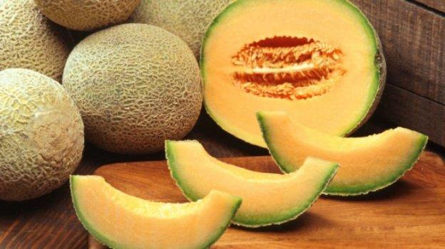 Cara Budidaya Melon Madu
