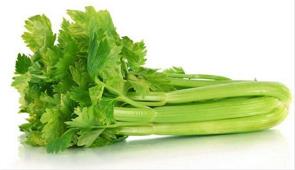 resep oseng daun seledri