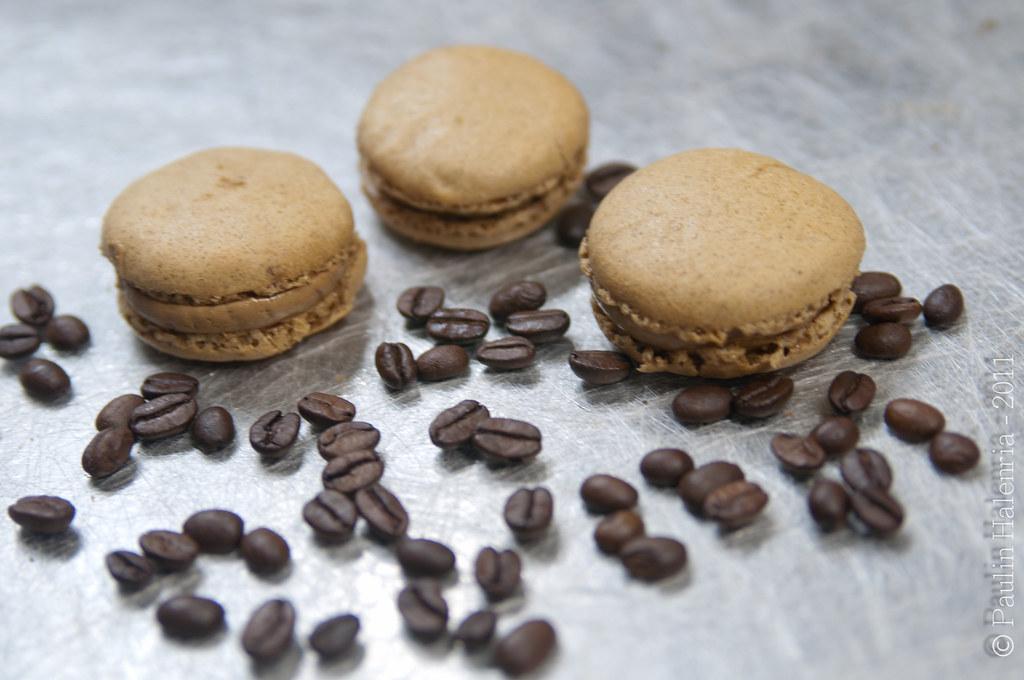 macaron-coklat-moka