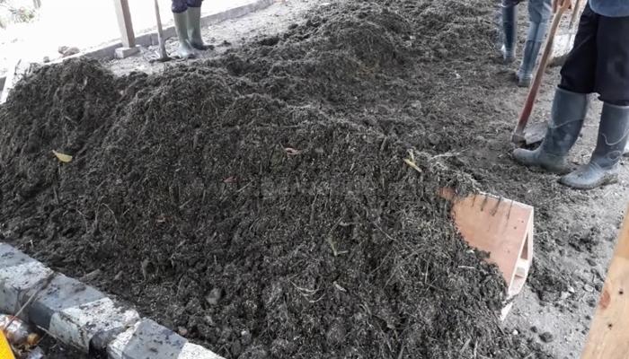 Pupuk Kompos Dari Kotoran Kambing